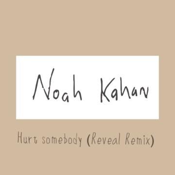 Noah Kahan - Hurt Somebody (Reveal Remix) Artwork
