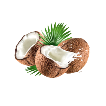James Kaye - Coconut (Chxnce Remix) Artwork