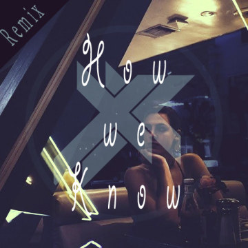 Sleeping Lion - How We Know (Lucx Vinixki Remix) Artwork