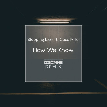 Sleeping Lion - How We Know (Dromme Remix) Artwork