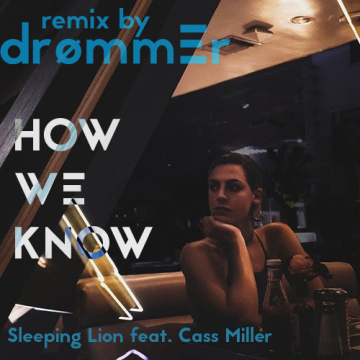 Sleeping Lion - How We Know (drømmer Remix) Artwork