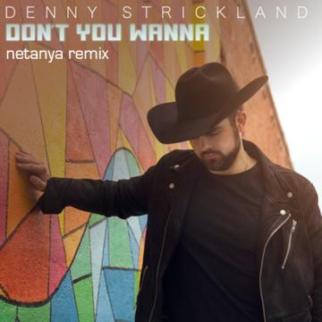 Denny Strickland - Don't You Wanna (netanya Remix) Artwork