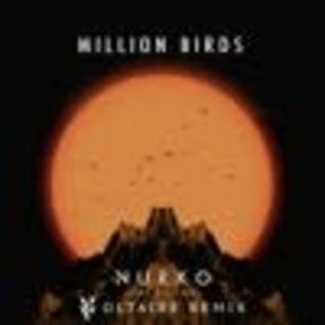 Voltaire - Nurko ft. Elle Vee - Million Birds (Voltaire Remix) Artwork