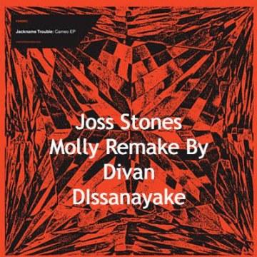 Joss Stone - Molly Town (Divan Dissanayake Remix) Artwork