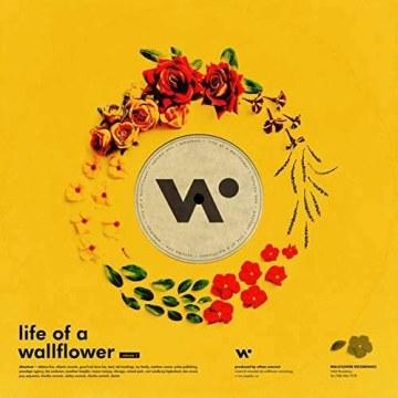 Whethan - Top Shelf (feat. Bipolar Sunshine) (Mert Ayaz Remix) Artwork