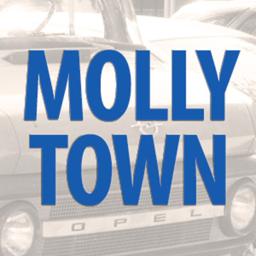 Joss Stone - Molly Town (Michael Borzilleri Remix) Artwork