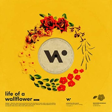 Whethan - Top Shelf (feat. Bipolar Sunshine) (Space giraffe Remix) Artwork