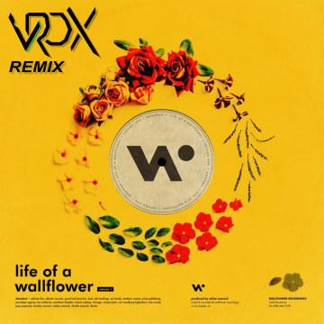 Whethan - Top Shelf (feat. Bipolar Sunshine) (Matheus Antunes Remix) Artwork