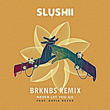 Slushii - Never Let You Go (feat. Sofia Reyes) (Brknbs Remix) Artwork