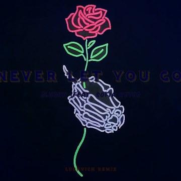 Slushii - Never Let You Go (feat. Sofia Reyes) (luchvich Remix) Artwork
