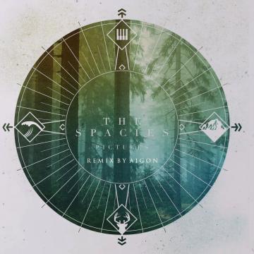 The Spacies - Pictures (AIGON Remix) Artwork