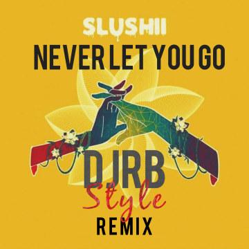 Slushii - Never Let You Go (feat. Sofia Reyes) (DJ Rohit 'Beats' Remix) Artwork
