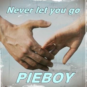 Slushii - Never Let You Go (feat. Sofia Reyes) (Pieboy Remix) Artwork