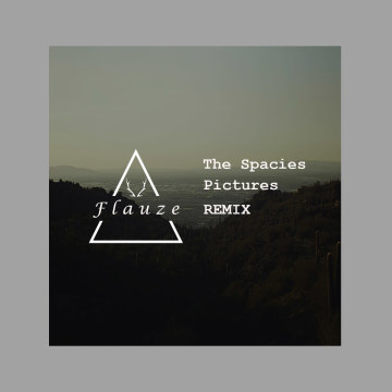 The Spacies - Pictures (Flauze Remix) Artwork