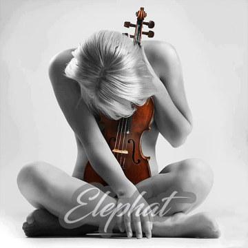 Elephat - Vioglide- Instrumental Artwork