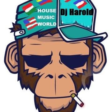 dj harold - rythim a dancer -produced by dj harold 2019 Artwork