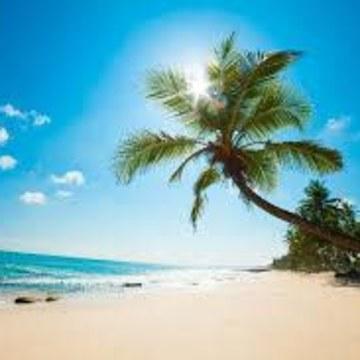Movichelle - Carribean sun Artwork