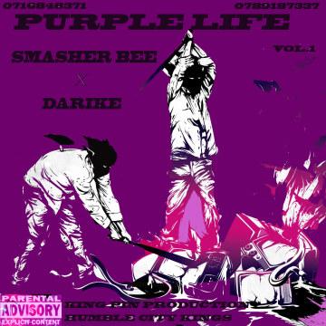 Smasher Bee ft Darike The Producer - iPhone Artwork