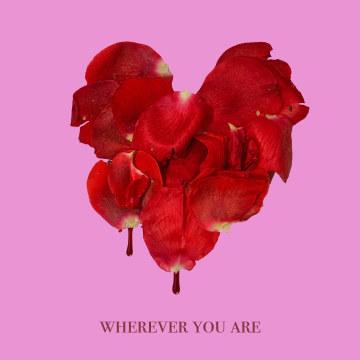 adam&steve - Wherever You Are feat. (Maty Noyes) Artwork