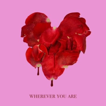 adam&steve - Wherever You Are feat. (Maty Noyes) (varioty Remix) Artwork