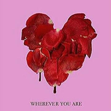 adam&steve - Wherever You Are feat. (Maty Noyes) (Snthnyx Remix) Artwork