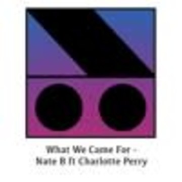Nate B - What We Came For Artwork