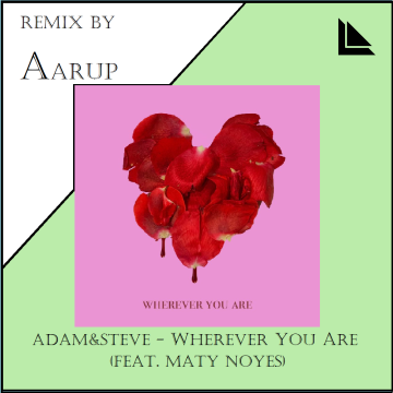 adam&steve - Wherever You Are feat. (Maty Noyes) (Aarup Remix) Artwork
