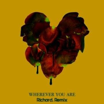 adam&steve - Wherever You Are feat. (Maty Noyes) (Richard Remix) Artwork
