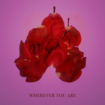 adam&steve - Wherever You Are feat. (Maty Noyes) (AIGON Remix) Artwork