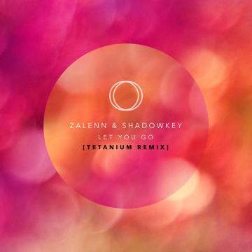 Zalenn & Shadowkey - Let You Go (feat. Chelsea Paige & Ebby) (Thet Naing Remix) Artwork