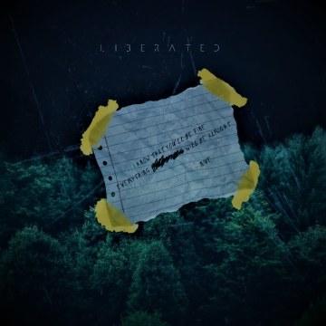 NIve - Liberated (DWNBT Remix) Artwork