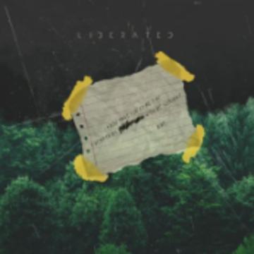 NIve - Liberated (Christian Gawel Remix) Artwork