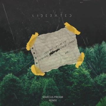 NIve - Liberated (Marcus Pream Remix) Artwork