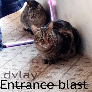 Dvlay - entrance blast Artwork