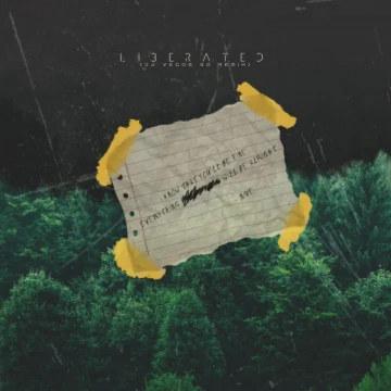 NIve - Liberated (Dj Vegas SA Remix) Artwork