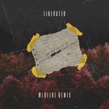 NIve - Liberated (WLDFIRE Remix) Artwork