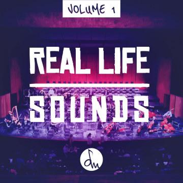 Dam Dominici - Real Life Sounds Vol.1 Artwork