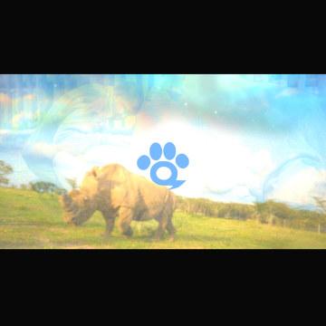 Music For Wildlife - Sudan's Song Artwork