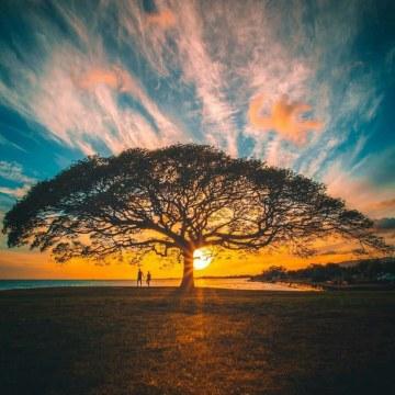 Psalm Ebube - Psalm Ebube - Life is Beautiful Artwork