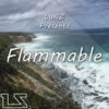 LukiZ - LukiZ - Flammable Artwork