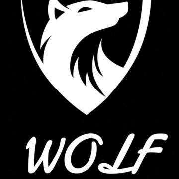 WOLF - The chainsmokers x ILLNEUIM - Take Away ( WOLF REMIX) Artwork