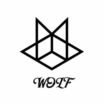 WOLF - Wolf - go away(original mix) Artwork