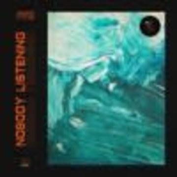 Sam Smyers - Nobody Listening (feat. Lizzy Land) Artwork