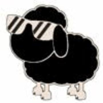 Zacx - Zacx - Sick Sheep (KING OF BEATS ORACLE EDITION) Artwork