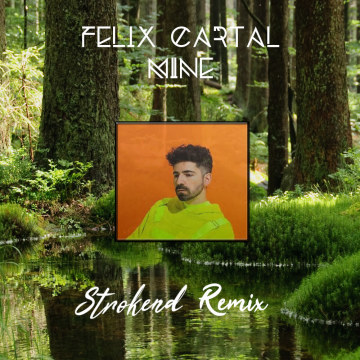 Felix Cartal - Mine (Strokend Remix) Artwork