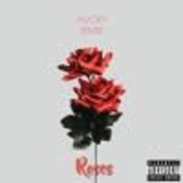 Avoxy - Roses (Remix) Artwork