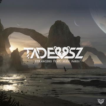 TADEUSZ - Strangers (feat. Alex Parsi) Artwork