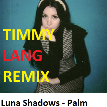 Luna Shadows - Palm Springs (feat. In.Drip.) (Timmy Lang Remix) Artwork