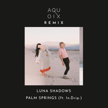 Luna Shadows - Palm Springs (feat. In.Drip.) (AQUOIX Remix) Artwork