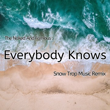 The Naked And Famous - Everybody Knows (Snow Trop Music Remix) Artwork